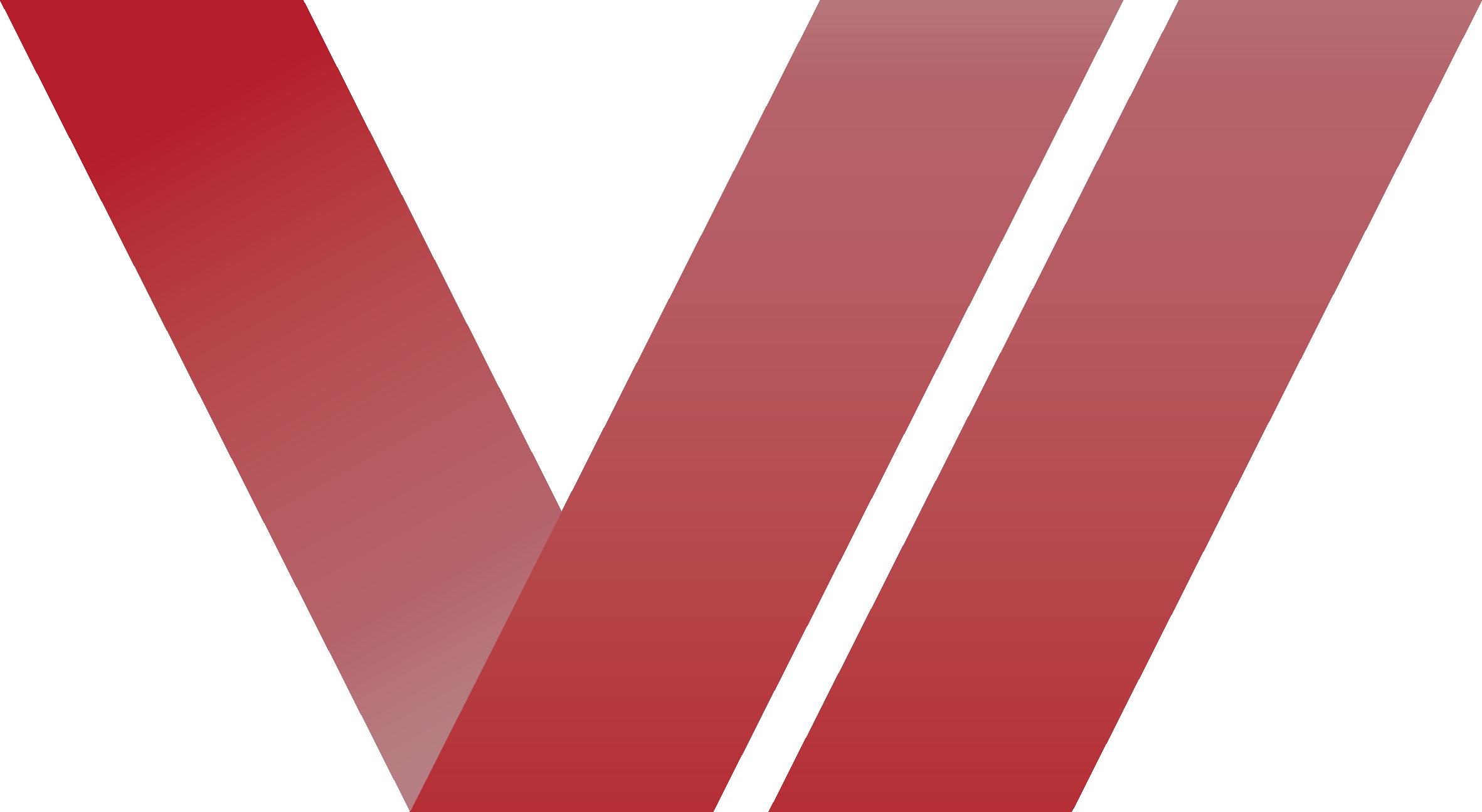 Viconnect Emblem